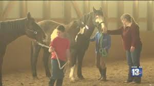 4 H Members Train For Horse Show