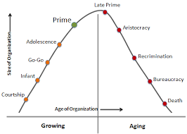 Organizational Life Cycle Chart The Corporate Life Cycle Model An Effective Indispensible