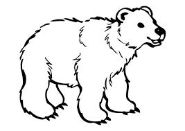 Disegno Da Colorare Orso Cat 10262 Images