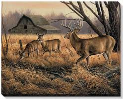 abandoned farmstead whitetail deer wrapped canvas art