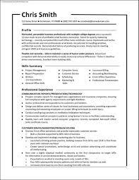 Free Functional Resume Template Resume Online Builder
