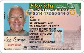 It Voice To The A - Apopka License Suspended There's Driver's Fix Clinic
