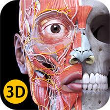 Anatomy 3d Atlas Anatomy 3d Atlas Human Anatomy Apps