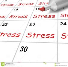college stress essay conclusion    college paper writing service college stress essay conclusion
