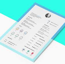 Best Professional Resumes The 17 Best Resume Templates For Every Type Of Professional