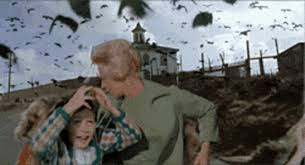 The best gifs of earthquake on the gifer website. July 13 2013 Gifs Get The Best Gif On Giphy
