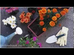 urban garden supply flint mi