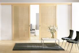 Decorating door solutions pictures : Protective Door Track Systems and Advance Sliding Door Solutions |