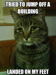 "Simon the Depressed Cat"" Is My New Favorite Meme - POPHANGOVER via Relatably.com"