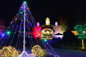6 amazing botanical gardens lights