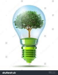 Light Bulb With Tree Inside Tree Inside Green Light Bulb Stock Illustration 317320667