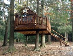 Milroy, PA Rustic Treehouse rustic-kids