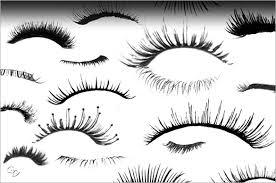 eyelash brush png. 34+ eyelashes photoshop brushes free download eyelash brush png