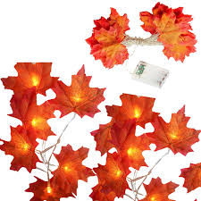 Fall Color String Lights Amazon Com Jerayley Maple Leaf Lantern Fairy String Lights