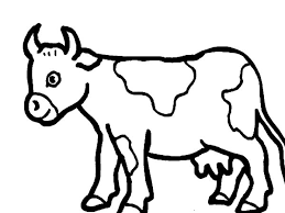 Small Picture 88 ideas Coloring Page Cow Jumping Over Moon on kankanwzcom