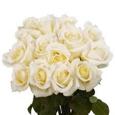 globalrose fresh white roses valentine s day flowers 100 stems