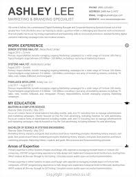 Senior Software Engineer Resume Template Free Download Letter. Most ...