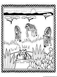 Small Picture Coloring Pages Zebras Colouring Pageszebra Coloring Pages Prints