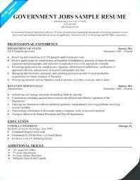 Example Of Resume For Job Application Job Resume Job Application ...