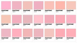Pantone Colour Chart Pink Related Keywords Suggestions For Pantone Pink Color Chart