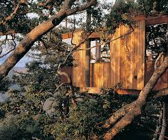 10 Gorgeous Northern California Glamping SitesTreehouse Vacation California