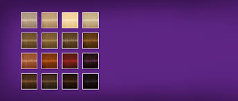 Igora Gloss And Tone Color Chart Palette