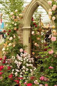 garden gate fl design junior rhs chelsea flower show focus on the flowers flirty