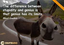 discover most popular quotes by leaders and by successful people the difference between stupidity and genius is that genius has its limits