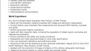 ndt resume sample professional ndt trainee templates to showcase your talent