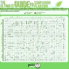 Garden Zone Chart Vegetable Planting Guide Zone 9 Picturesque Schedule Fall