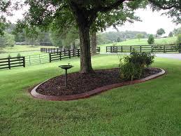 landscaping around a tree home design garden architecture blog