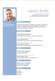 smart resume sample  helvetica blue layout word cv template    information technology