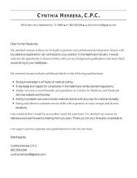what to put in a cover letter for a job christmas essays buy research papers online cheap destock