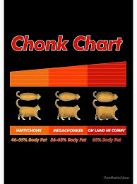 Overweight Cat Chart Fat Cat Meme Chonk Chart Funny Pet Lover Gift Spiral Notebook