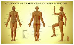 Acupoints Of Traditional Chinese Medicine Anatomical Chart Male