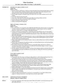 Actuarial Consultant Resume Samples Velvet Jobs