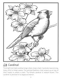 Small Picture Northern Cardinal Books Coloring Coloring Pages