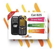 Cat B25 Survival Phone