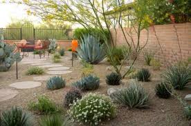 Desert Backyard Designs Cool Backyard Desert Landscaping Desert Landscaping For Your Yard In