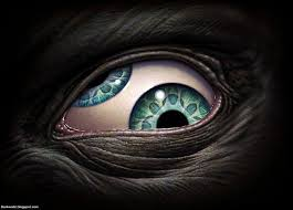 Image result for creepy eyes