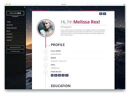 Free Resume Wordpress Template Professional Resume Templates