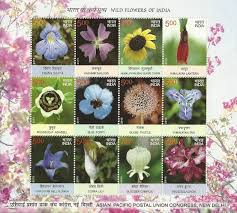 pictures of flowers with names in hindi pictures of flowers with of flowers with names