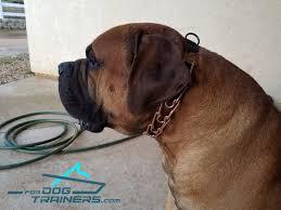Herm Sprenger Size Chart Order Herm Sprenger Dog Prong Collar Mastiff Collars