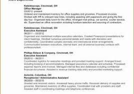 Dance Resume Templates Unique Resume For Dance Teacher Dance Teacher ...