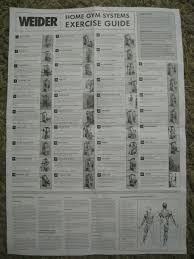 25 Uncommon Weider 8530 Exercise Chart Pdf