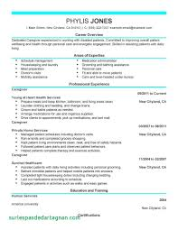 Livecareer Resume Builder Contact Number Inspirational Of Live