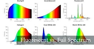 Spectrum Of Fluorescent Light Areloan Info
