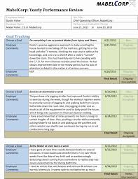 12 13 Performance Appraisal Goals Examples Lascazuelasphilly Com