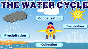 the water cycle collection condensation precipitation the water cycle collection condensation precipitation evaporation learning videos for children