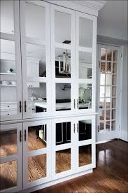 kitchen custom mirrored cabinet doors diy medicine ideas fantasy glass front intended for 7